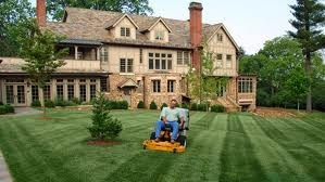 Peartree Property Services Inc. A Proven Record For Reliable Lawn Mowing Service